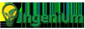 Ingenium Training & Consulting Logo
